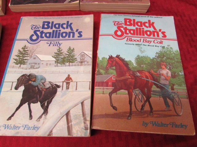 Black Stallion Book Cover : Lot detail set of soft cover black stallion books by